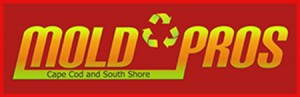 Mold Pros Cape Cod, mold removal cape cod