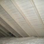 attic mold, MicroBloc, Yarmouth, Dennis, Harwich, Hyannis