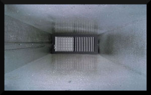 Helpful hints for good air duct maintenance mold pros for Ecobatt insulation reviews
