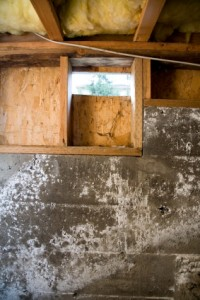 mold in Duxbury crawlspace