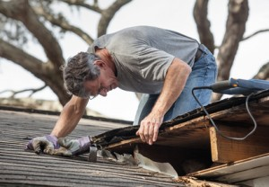 homeowner inspecting roof for leak that caused mold in his attic