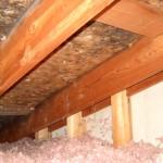 attic mold, MicroBloc, Duxbury, Scituate