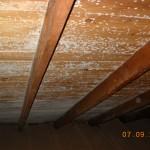attic mold, MicroBloc, Hyannis, Yarmouth, Dennis